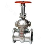 Nominal pressure level cast steel gate valve