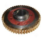 Worm Gear, P/N: TWPX250-8 |Agitator HA-18.5 Gear Box Parts